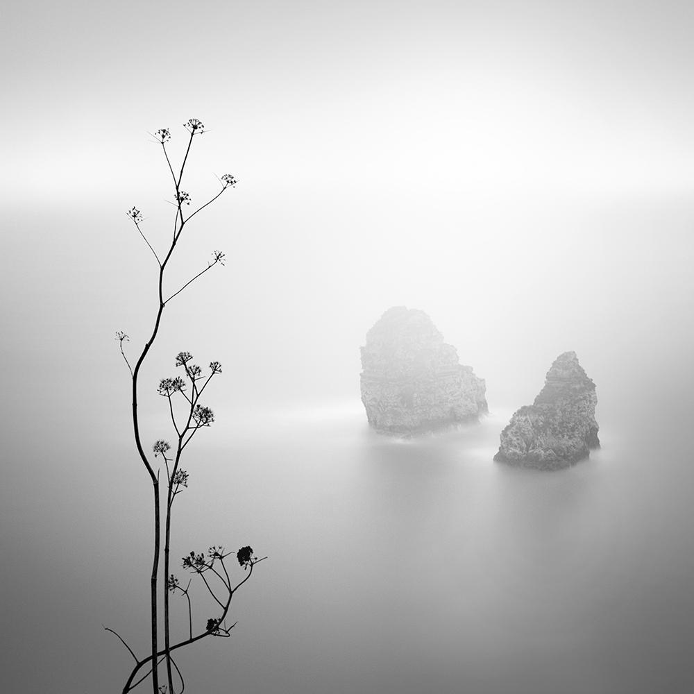 """84 in. x 84 in. """"Misty Rocks"""" by Alexandre Manuel Canvas Wall Art"""