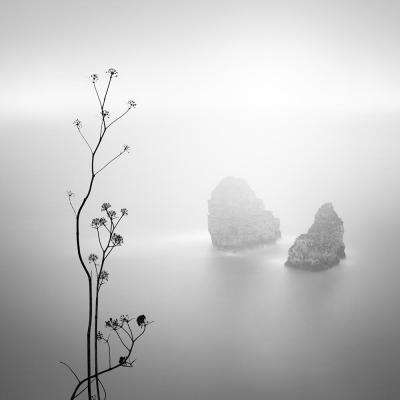 "84 in. x 84 in. ""Misty Rocks"" by Alexandre Manuel Canvas Wall Art"