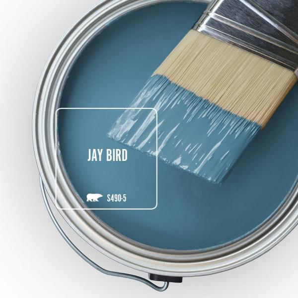 Reviews For Behr Marquee 1 Gal S490 5 Jay Bird One Coat Hide Eggshell Enamel Interior Paint Primer 245401 The Home Depot