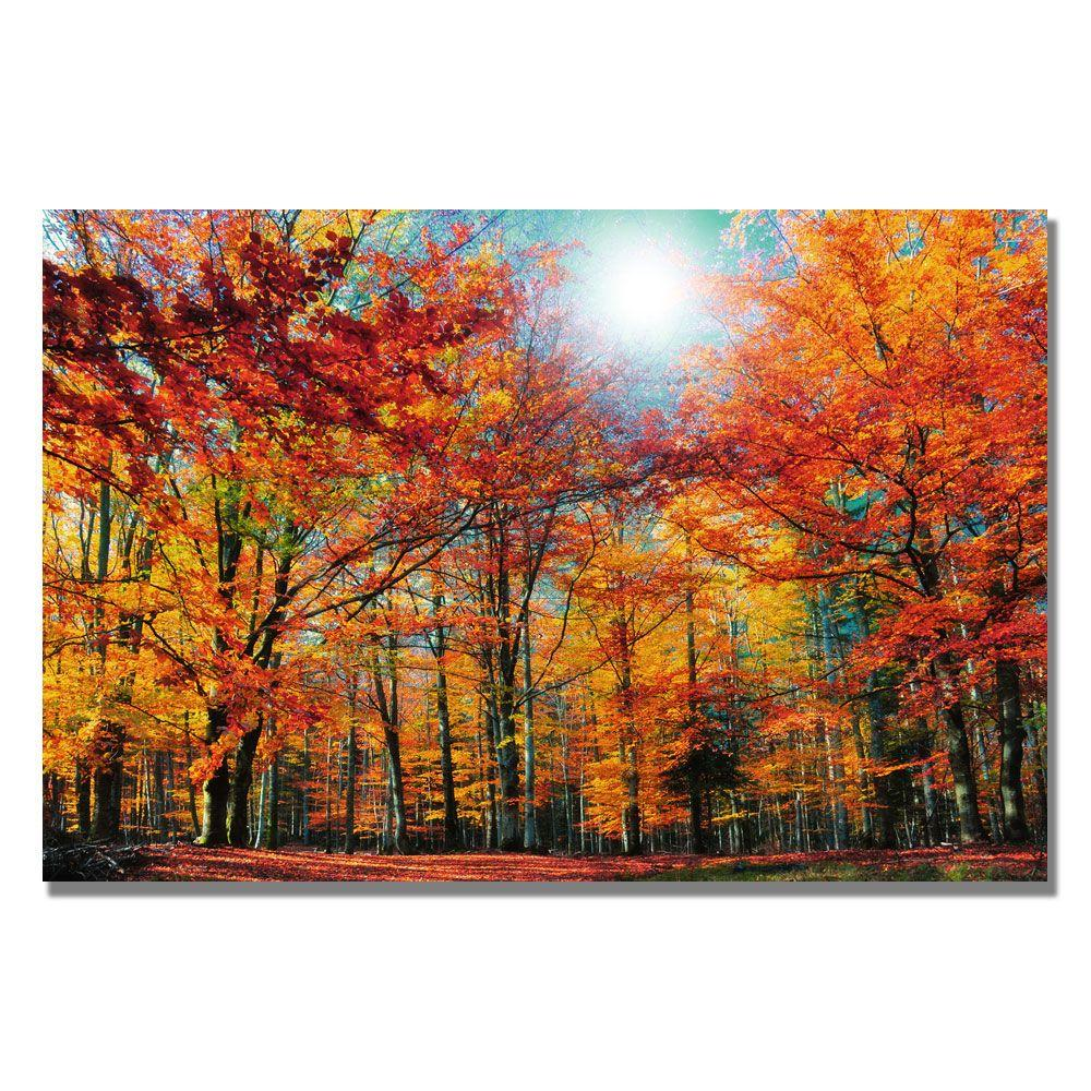 Trademark Fine Art 16 in. x 24 in. Camouflage Canvas Art-DISCONTINUED