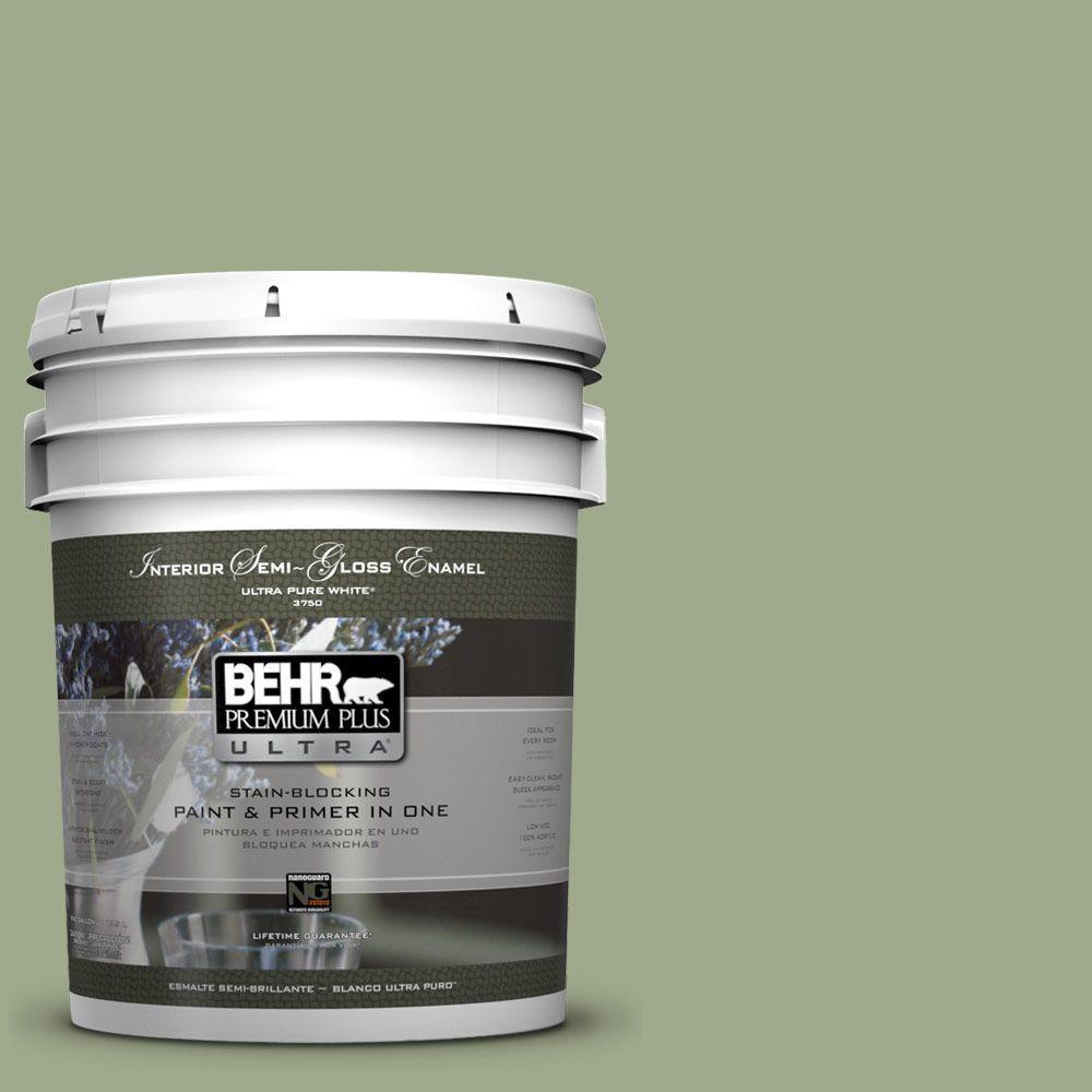 5-gal. #PMD-36 Mountain Sage Semi-Gloss Enamel Interior Paint