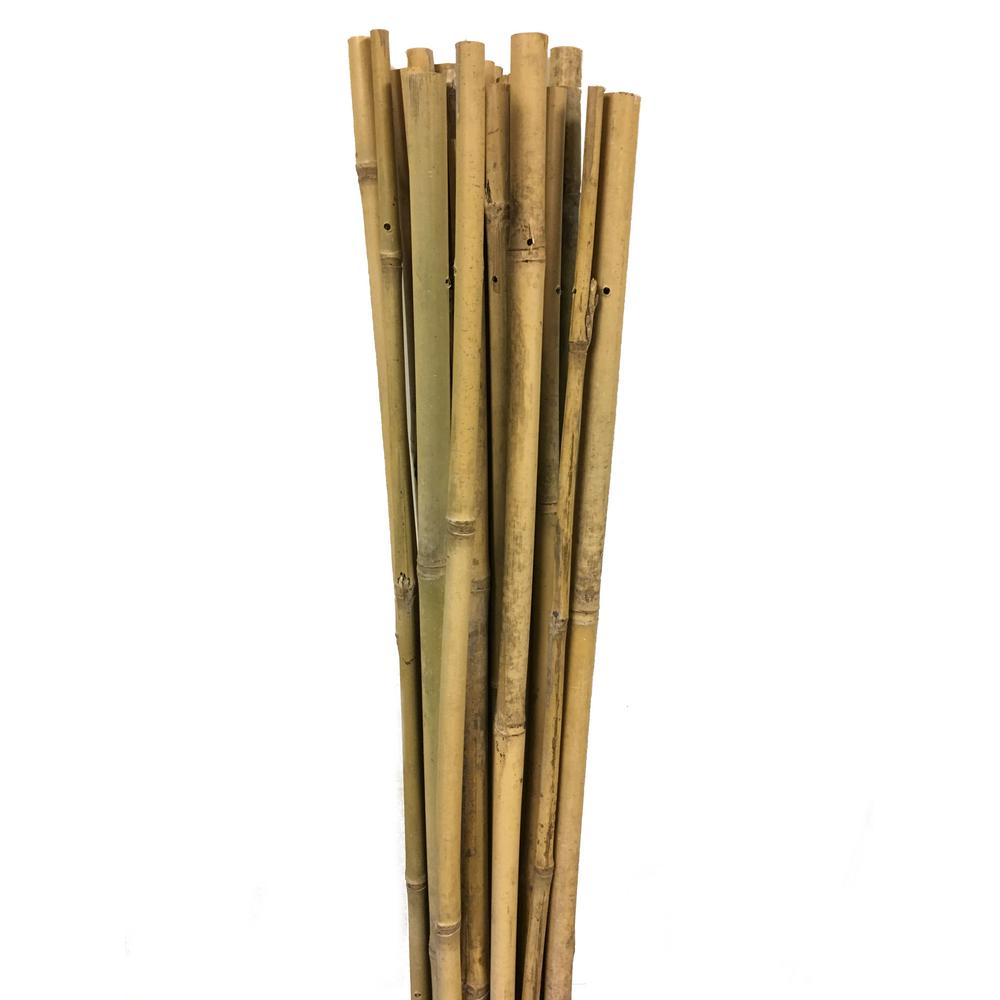 Master Garden Products 72 In H Bamboo Garden Stake Support 10 Per Bundle Bs 72 The Home Depot