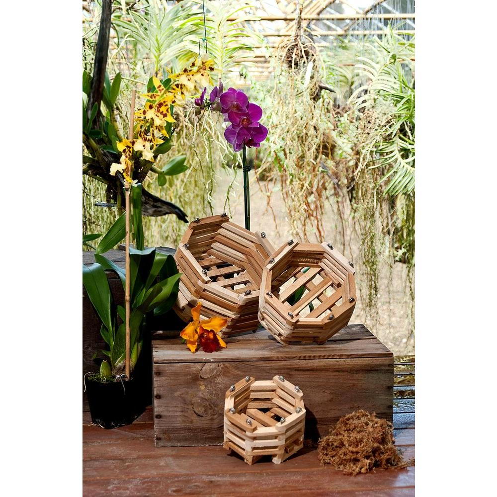 6 Inch Octagon Orchid Basket Plastic Quantity of 9