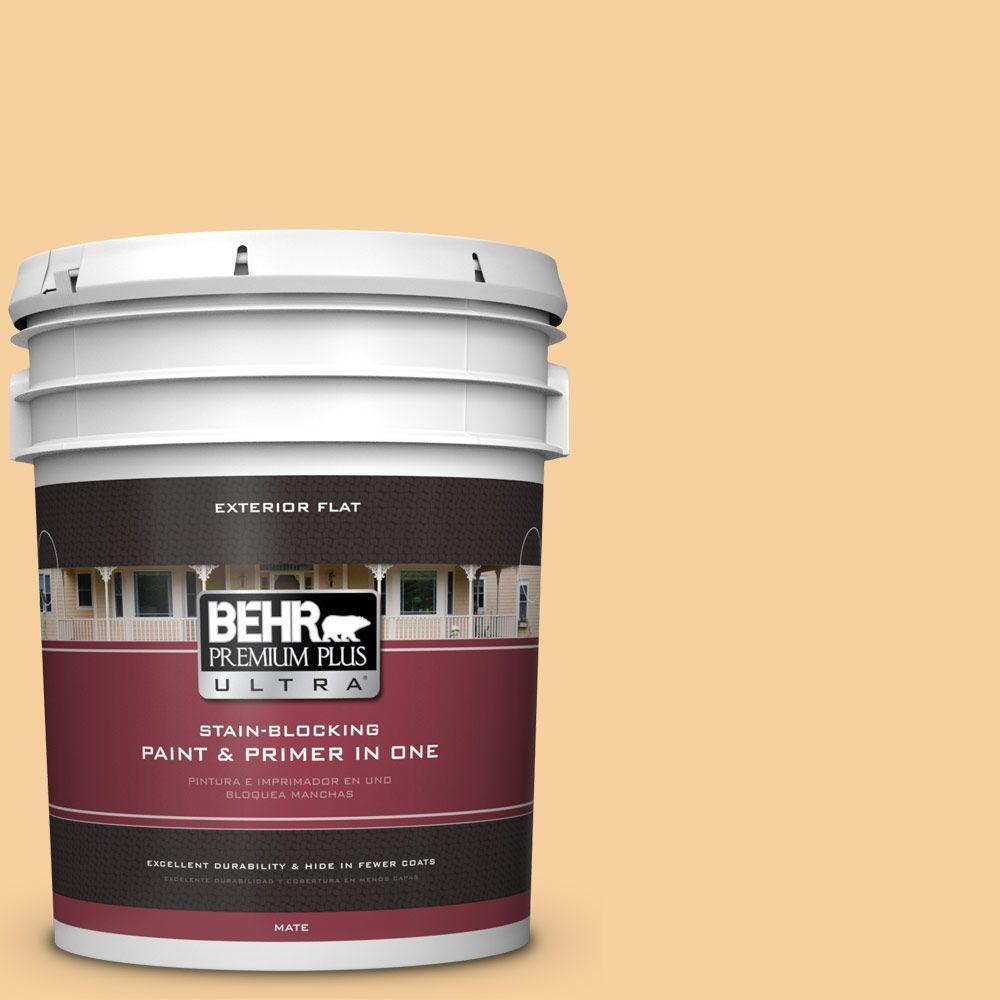 5-gal. #320C-3 Honey Butter Flat Exterior Paint