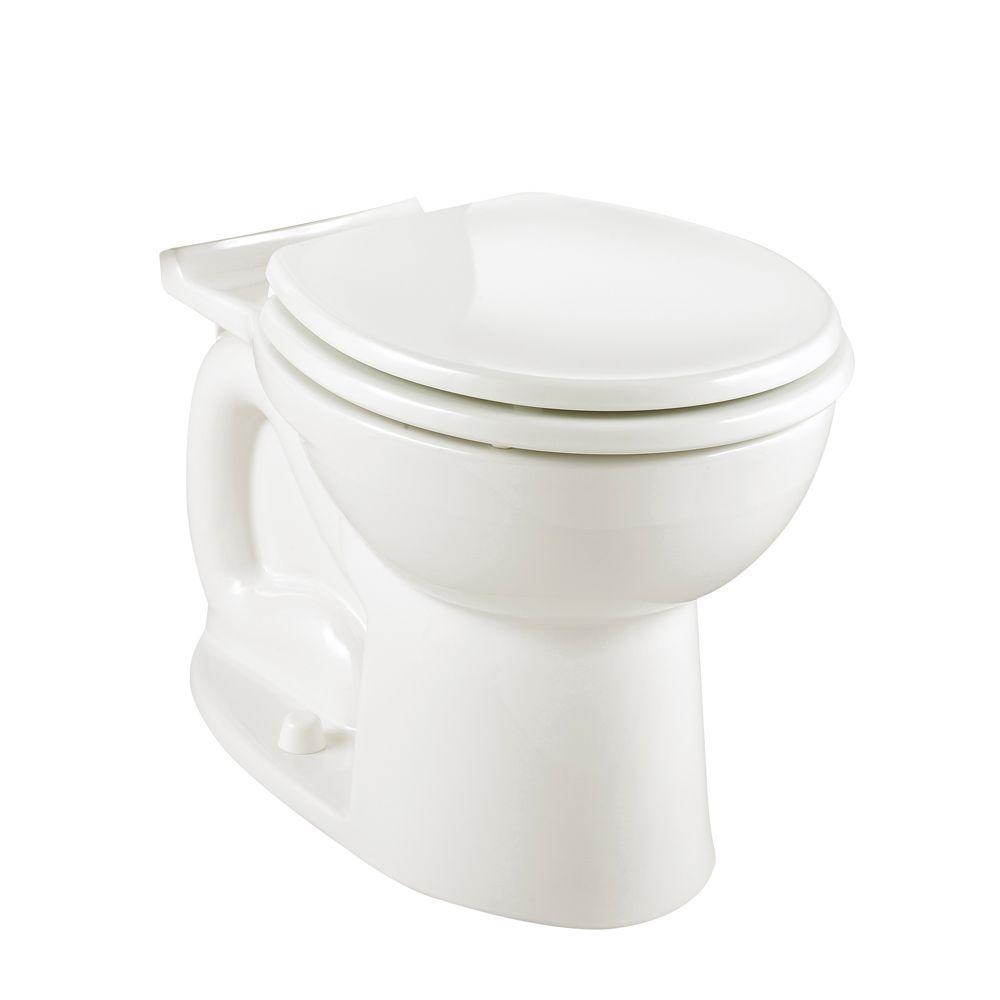Cadet 3 1.6 GPF Elongated Toilet Bowl Only with Bolt Caps
