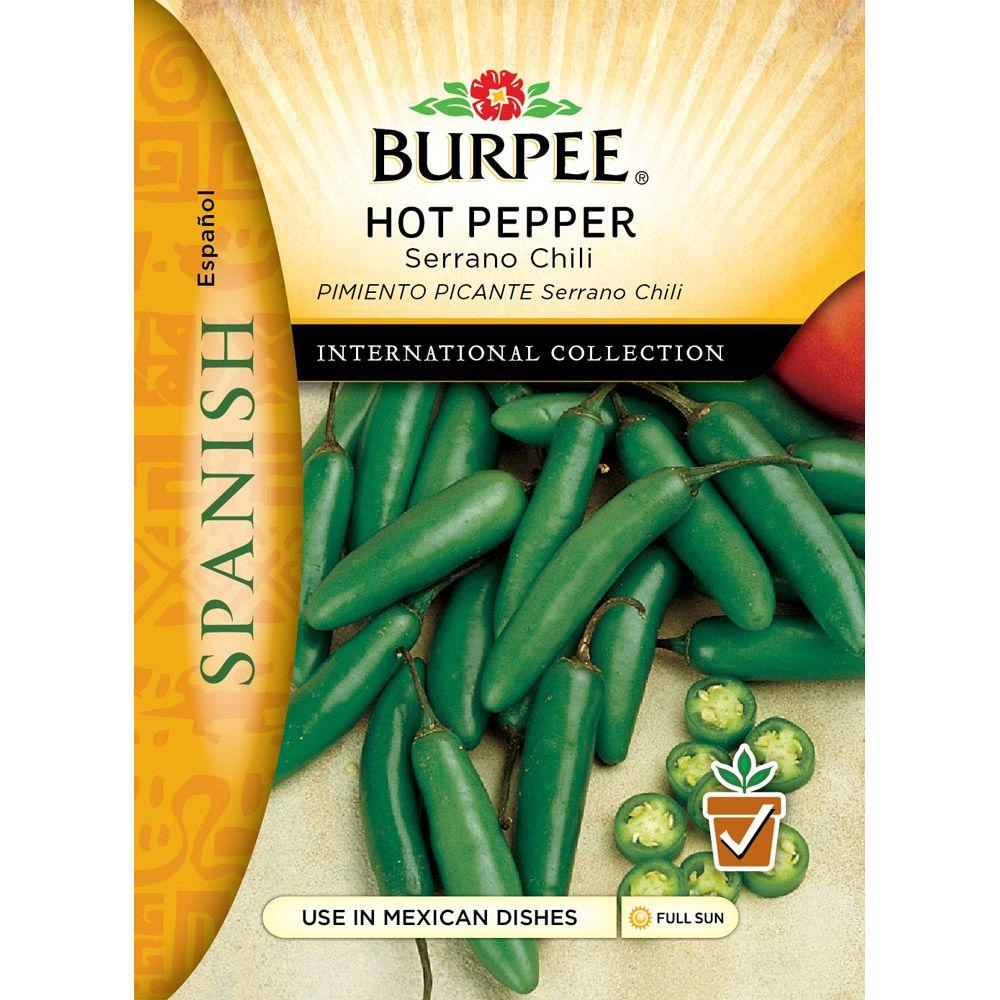 Burpee Spanish Pepper, Hot Serrano Chili Seed