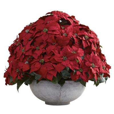 Holiday 34 in. W x 34 in. D x 29.75 in. H Giant Poinsettia Arrangement with Decorative Planter