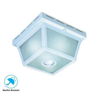White Outdoor Ceiling Lighting
