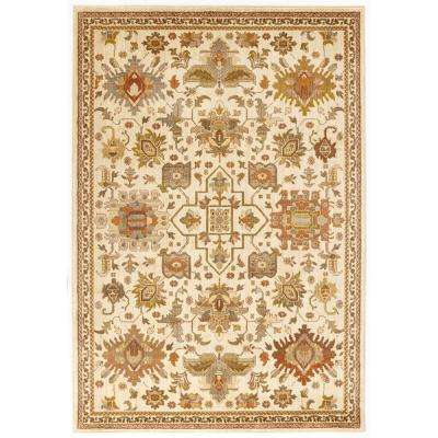 4 X 6 Home Decorators Collection Area Rugs Rugs The Home Depot