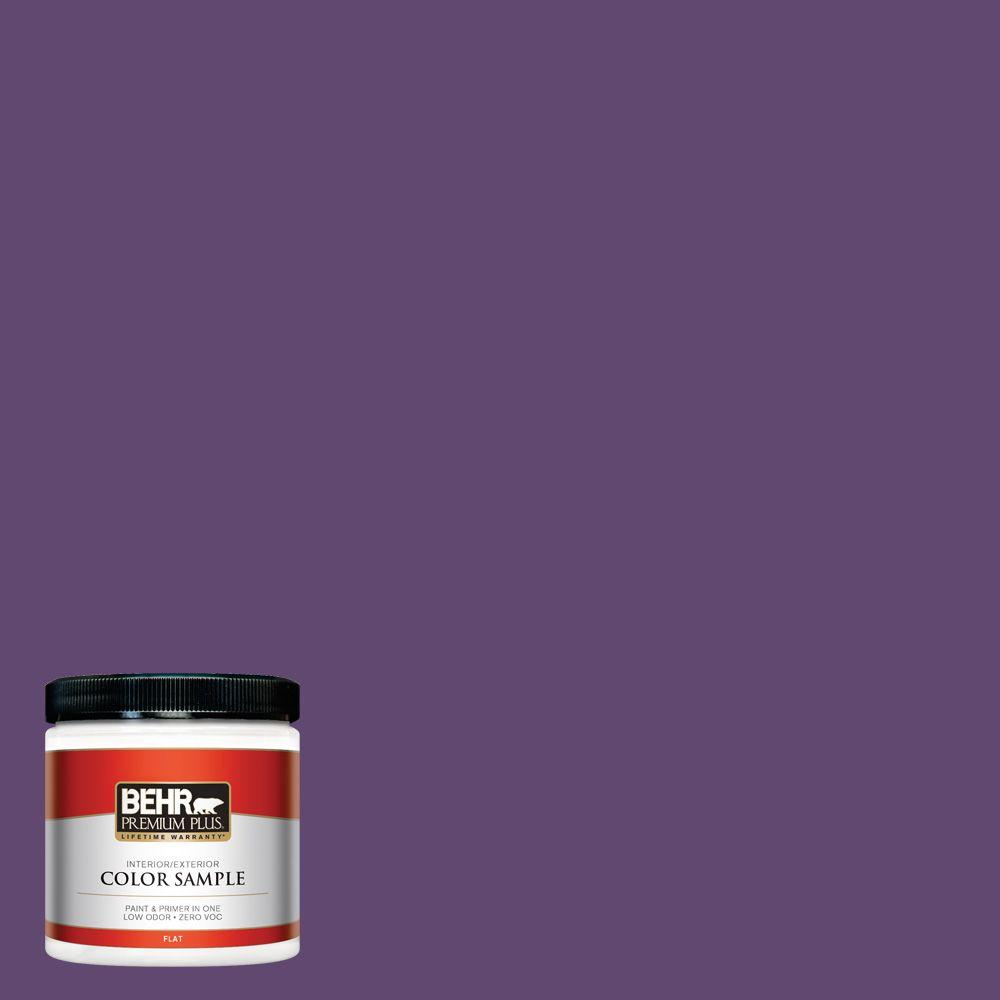 S G 670 Deep Violet Flat Interior Exterior Paint And Primer In One Sample