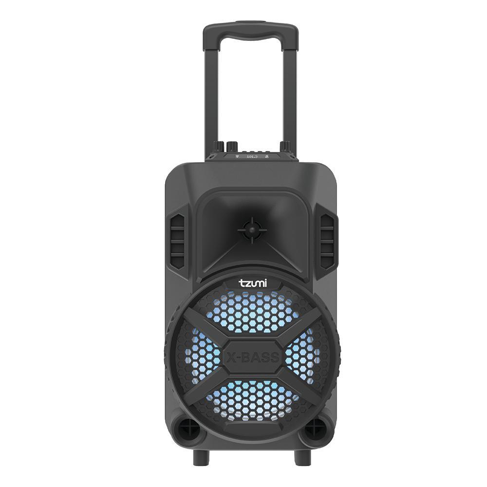 Portable Ion Speaker