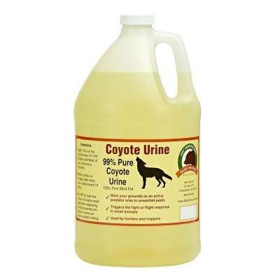128 oz. Coyote Urine by Bare Ground