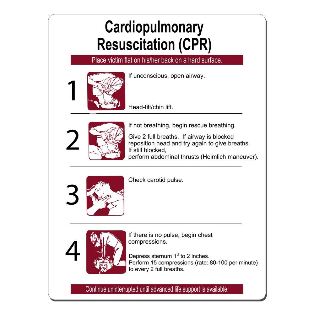 Lynch Sign 16 in. x 21 in. CPR Instructions Sign Printed ...