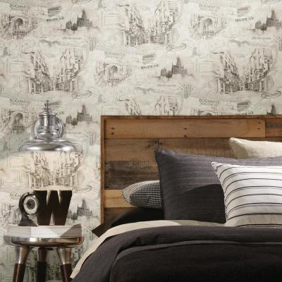 28.29 sq. ft. Harry Potter Map Peel and Stick Wallpaper