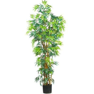 6 ft. Curved-Trunk Bamboo Silk Tree