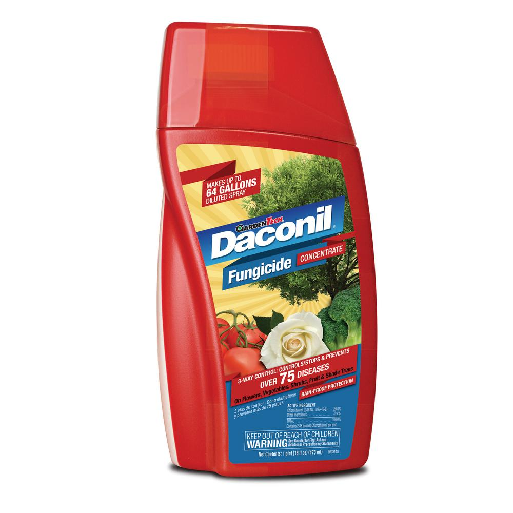 Daconil 16 oz  Concentrate Fungicide