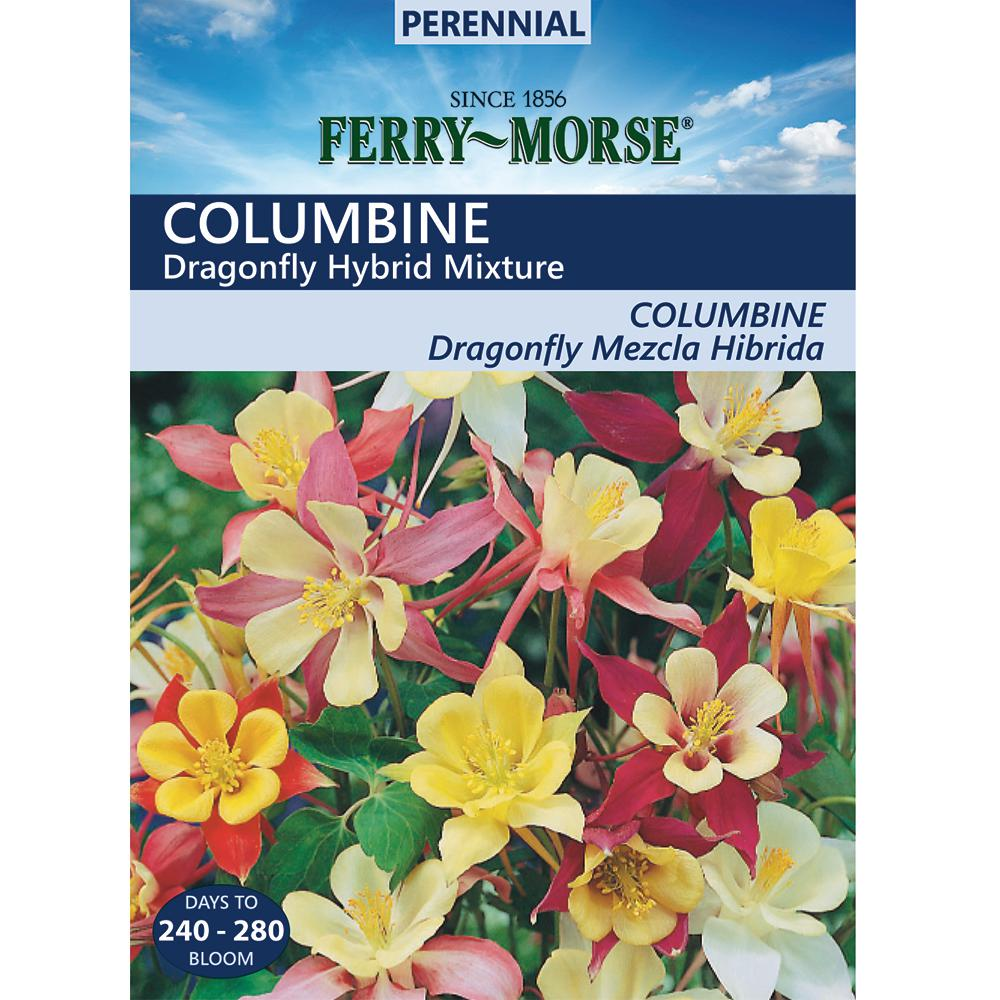 Ferry morse columbine dragonfly hybrid mix colors seed 4178 the ferry morse columbine dragonfly hybrid mix colors seed izmirmasajfo