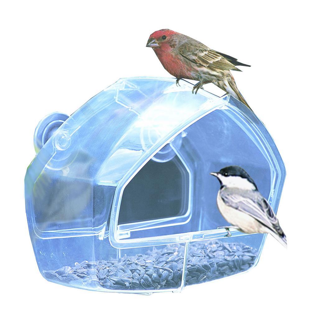 Clear Window Mount Bird Feeder - 1 Cup Capacity