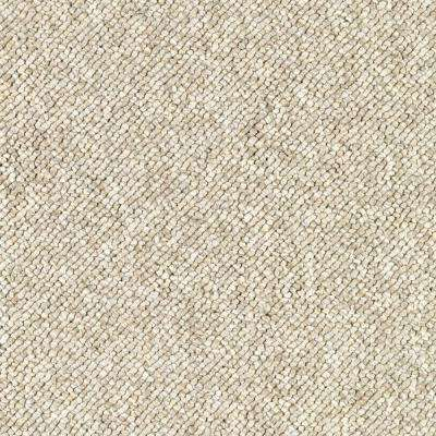 Carpet Sample - Qualifier - Color Artist's Canvas Loop 8 in. x 8 in.