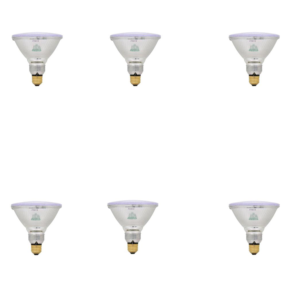 Sylvania 60-Watt Halogen PAR38 Flood Light Bulb (6-Pack)