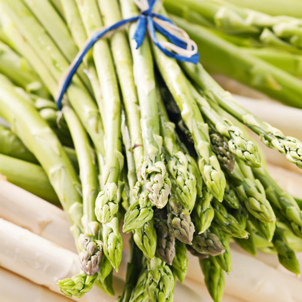asparagus vegetable plants edible garden the home depot