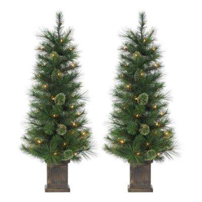4 ft. Pre-Lit Potted Frosted Alaskan Fir with 100 LED Lights