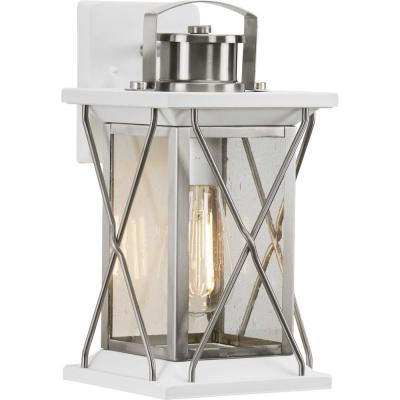 Barlowe 1-Light Stainless Steel Outdoor Small Wall Lantern Sconce