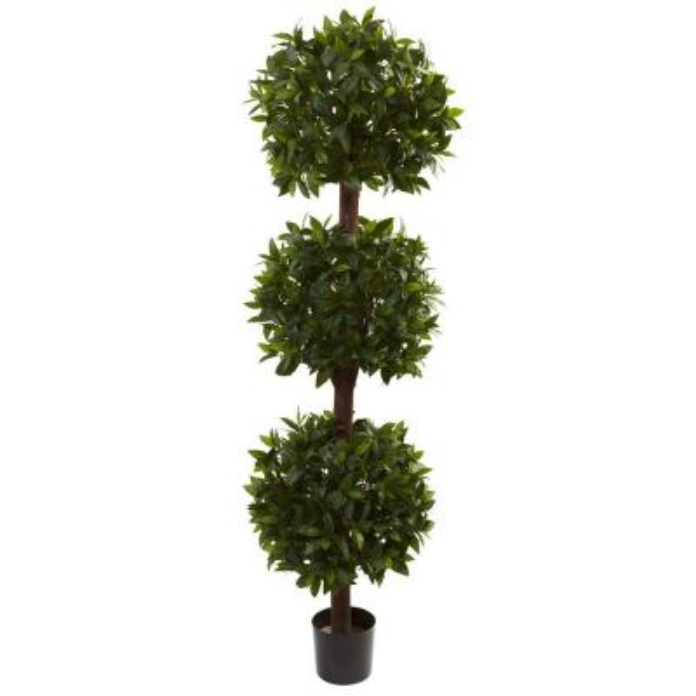 6.5 ft. Sweet Bay Triple Ball Topiary