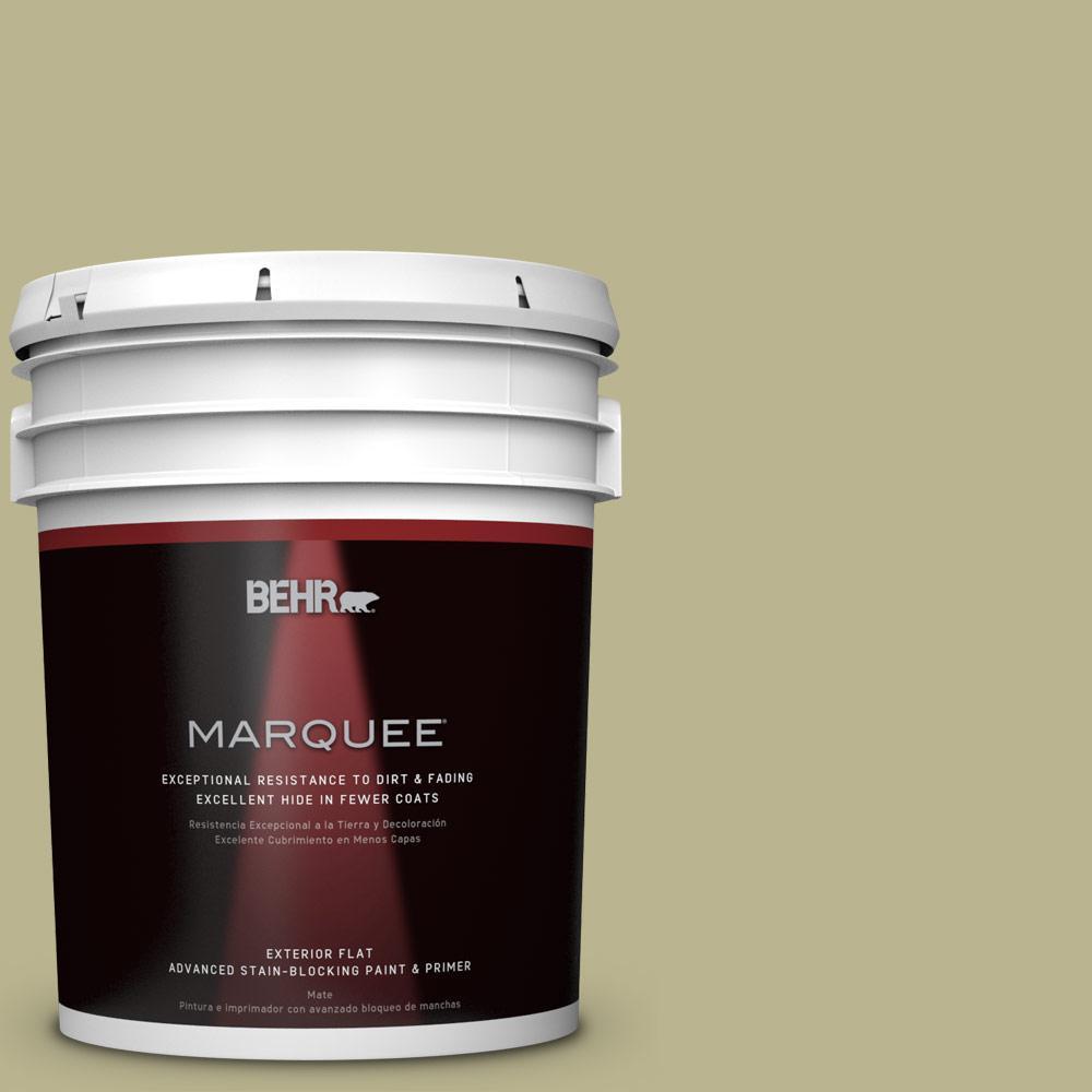 BEHR MARQUEE 5-gal. #PPU9-10 Wasabi Powder Flat Exterior Paint