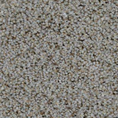 Carpet Sample - Trendy Threads II - Color Hamilton Texture 8 in. x 8 in.