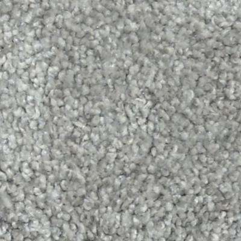 Carpet Sample - Harvest I - Color Buckholts Texture 8 in. x 8 in.