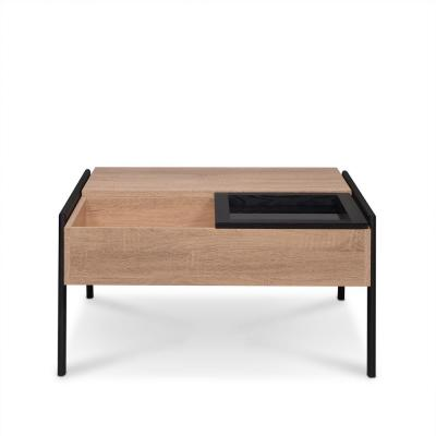 Fakhanu Rustic and Black Coffee Table
