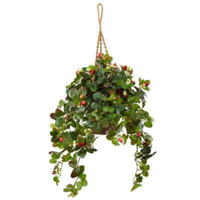 Indoor 41 in. H Strawberry Bush Silk Arrangement in Hanging Basket