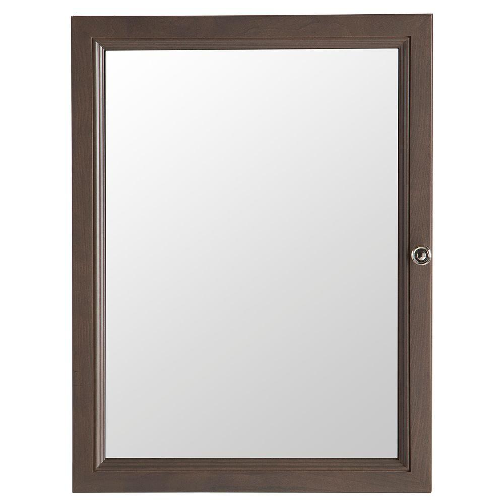Delridge 22 in. W x 30 in. H Framed Surface-Mount Bathroom
