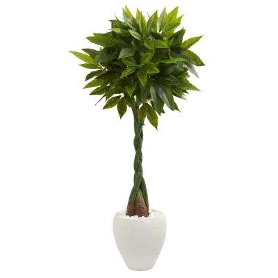 Real Touch 5 ft. High Indoor Money Artificial Tree in White Oval Planter