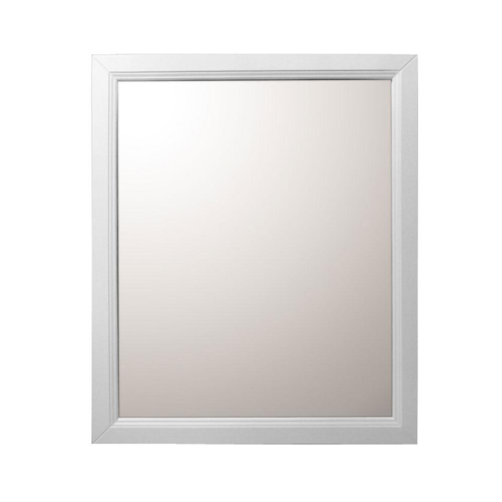 Irwindale 24 in. W x 30 in. L Wood Surface-Mount Mirrored