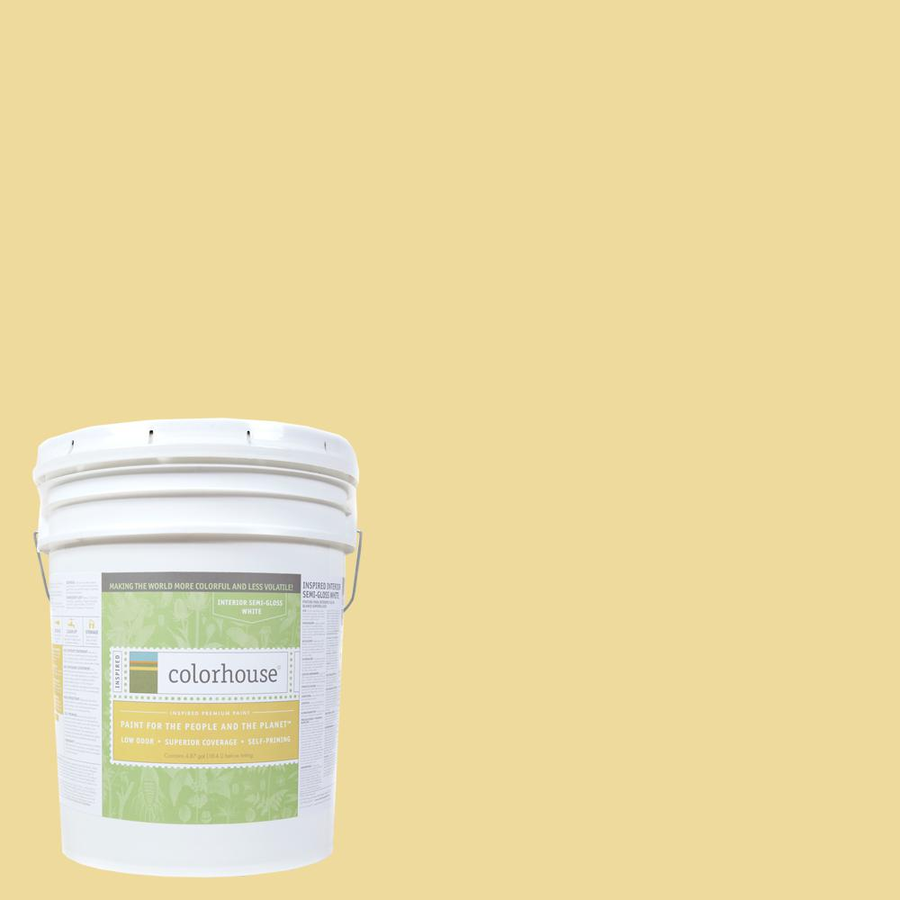 Colorhouse 5 gal. Aspire .03 Semi-Gloss Interior Paint