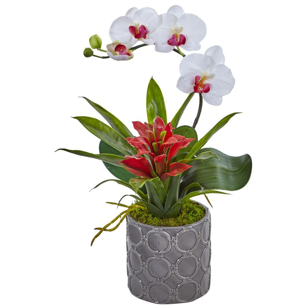 Mini Phalaenopsis Orchid and Bromeliad Silk Arrangement