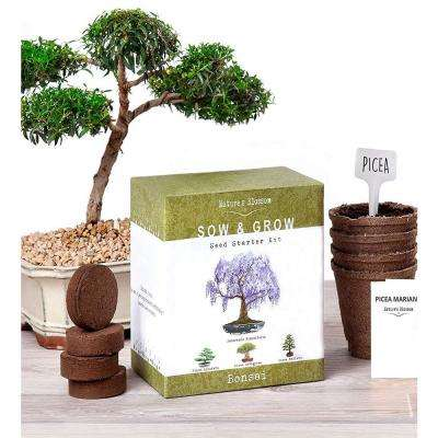 Bonsai Growing Kit. Grow 4 Types of Miniature Trees, Set with - Seeds, Soil, Planting Pots, Labels and Growing Guide