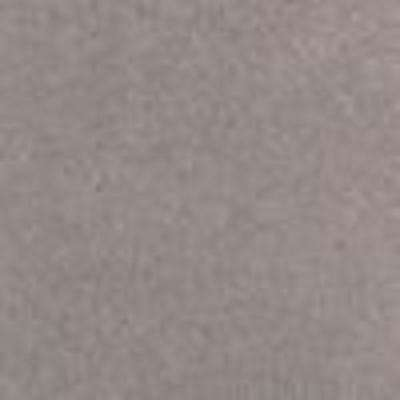 Silver Mane I - Color Bonita Texture 12 ft. Carpet