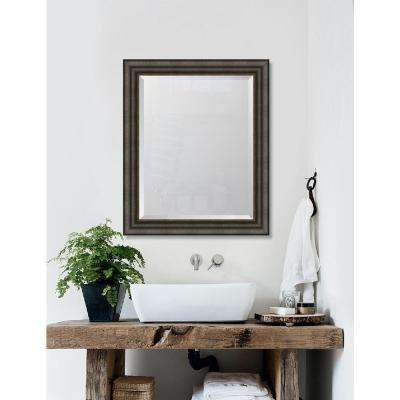 29 in. x 35 in. Framed 3 3/8 in. Textured Brown with Silver Lip Resin Frame Mirror