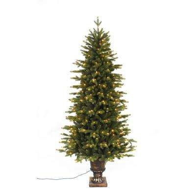 6 ft. Pre-Lit LED Aspen Fir Potted Artificial Christmas Tree with 350 Warm White Lights