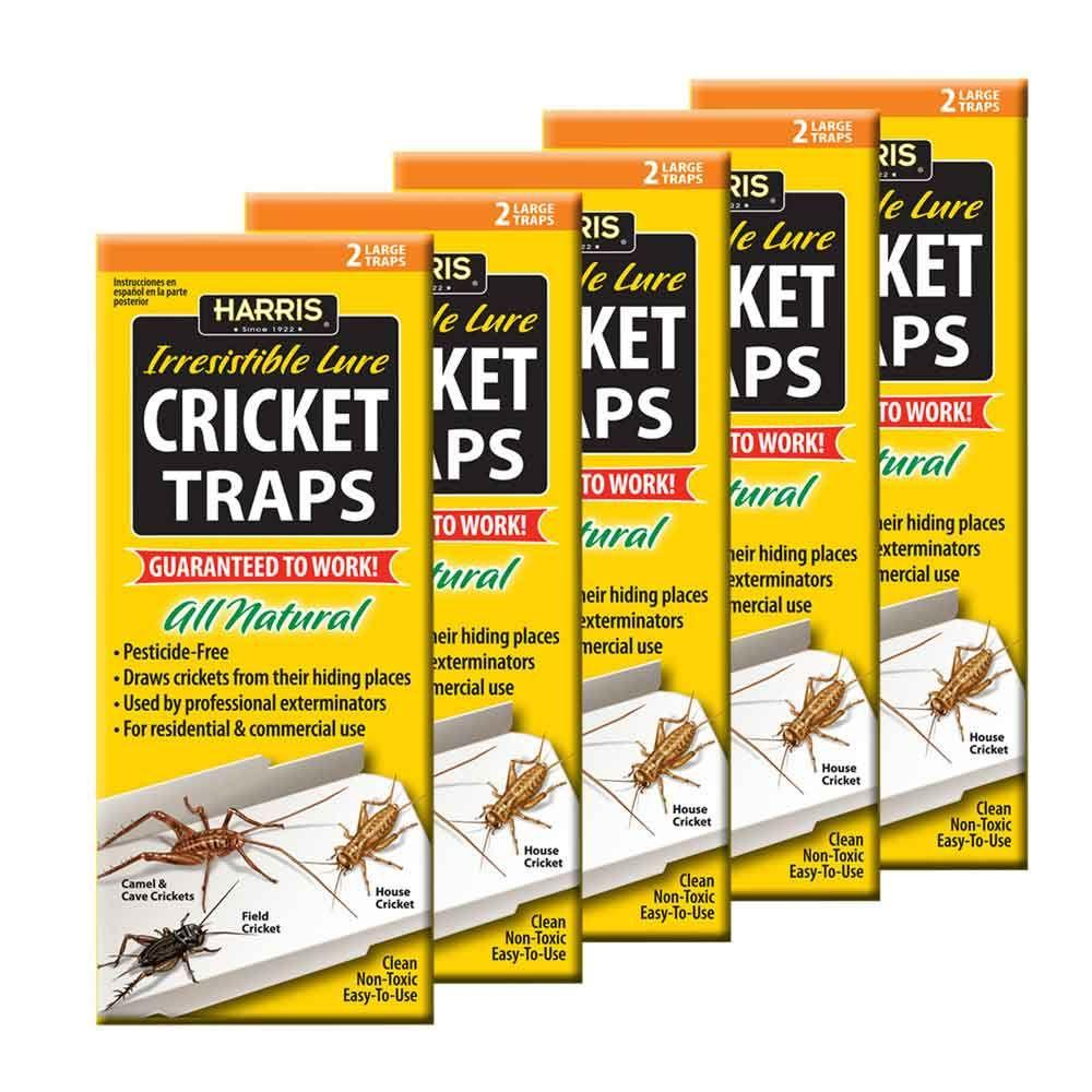 Harris Cricket Trap Value PackCTRPVP The Home Depot