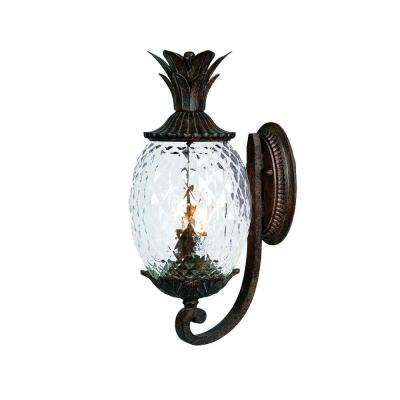 Lanai Collection 2-Light Black Coral Outdoor Wall-Mount Light Fixture