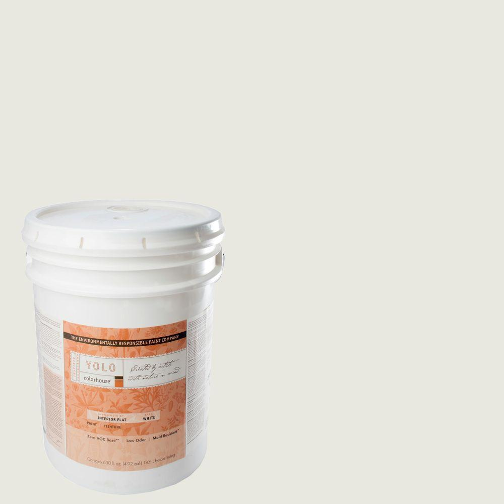 YOLO Colorhouse 5-gal. Imagine .06 Flat Interior Paint-DISCONTINUED