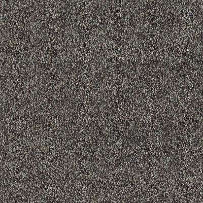 Tides Edge - Color Inkwell Textured 12 ft. Carpet
