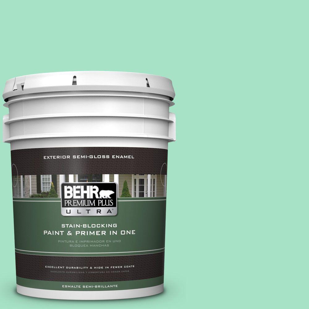 BEHR Premium Plus Ultra 5-gal. #470A-3 Reef Green Semi-Gloss Enamel Exterior Paint