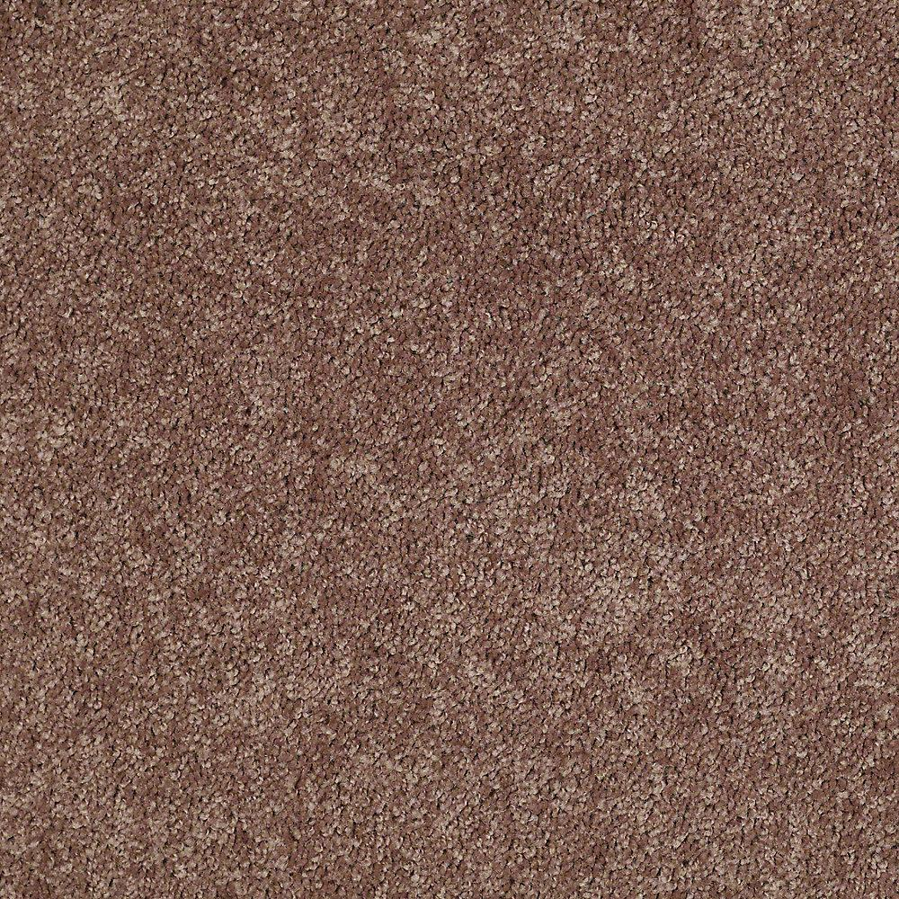 Trafficmaster Residential Carpet Sample Palmdale I 12
