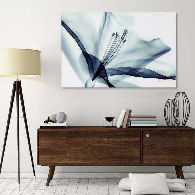 "32 in. x 48 in. ""Amaryllis"" Frameless Free Floating Tempered Glass Panel Graphic Wall Art"