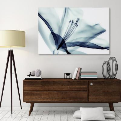 """32 in. x 48 in. """"Amaryllis"""" Frameless Free Floating Tempered Glass Panel Graphic Wall Art"""